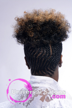 Back View of a Natural Hairstyle from Shayla Wade