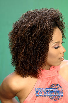 NATURAL HAIR STYLES from PAULETTE EDWARDS (4)
