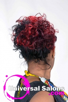 Braided Knots Updo Hairstyle with Hair Color from Pamela Webster (5)