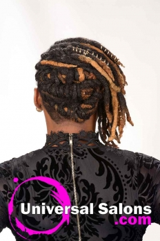 Deirdre Clay's Natural Loc Updo Hairstyle (7)