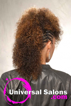 Highlighted Twisted Fohawk Hairstyle from Talia Brown Williams (5)