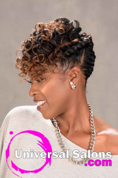 Natural Hairstyle with Braids and Twists from Sess Cannon (2)