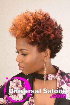 Natural Hairstyle with Curls and Hair Color from D Hair Weaver (2)