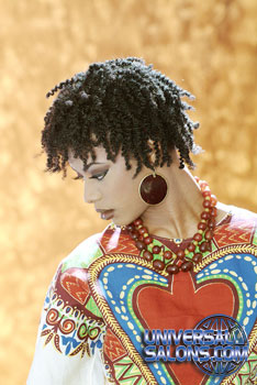 NATURAL HAIR_STYLES from ERMA STEPHENS (2)