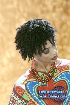 NATURAL HAIR_STYLES from ERMA STEPHENS (3)