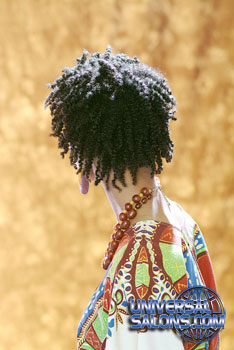 NATURAL HAIR_STYLES from ERMA STEPHENS (4)