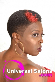 Short Natural Hairstyle with Hair Color from Bishop Da Showstopper (3)