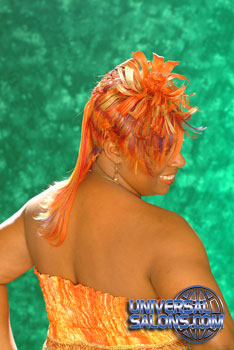 COLOR HAIR STYLES from__! NAKIA RIVERS!!!!