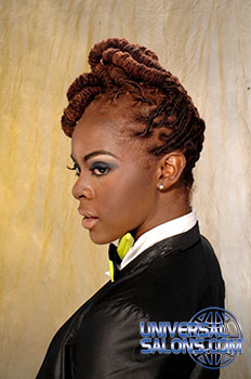 NATURAL HAIR STYLES_from_Paulette Anderson