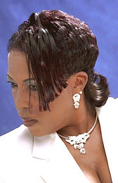 PROFESSIONAL HAIR STYLES from DEE WARNER