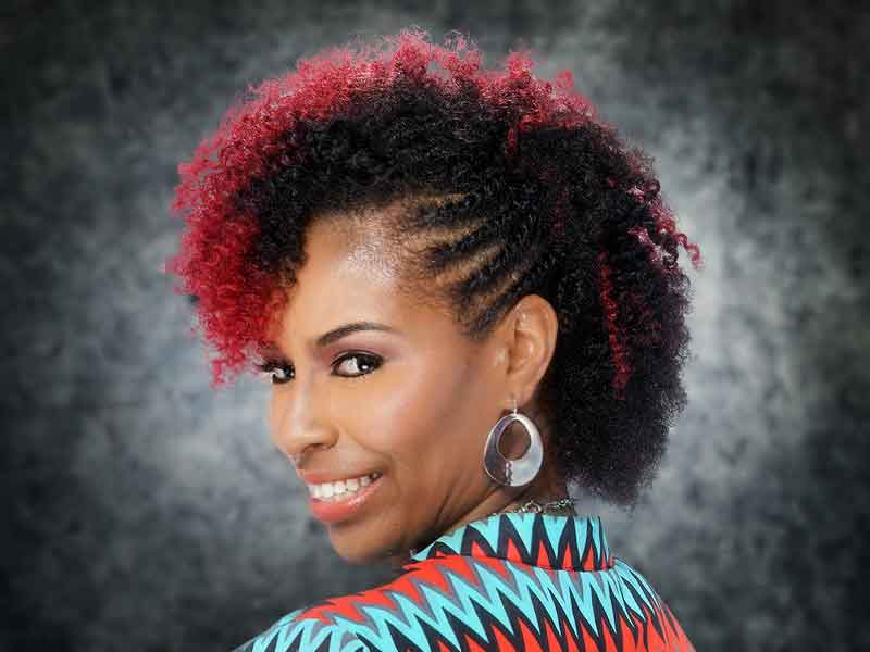 Curly Braided Hairstyle with Hair Color Ideas for Black Women