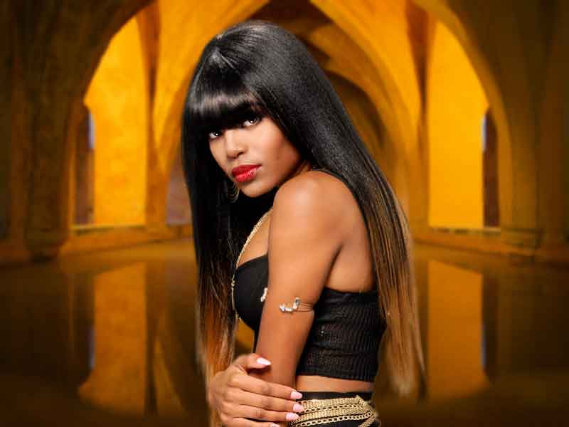 Terresa Murray's Silky Long Black Hairstyle with Wide Bangs