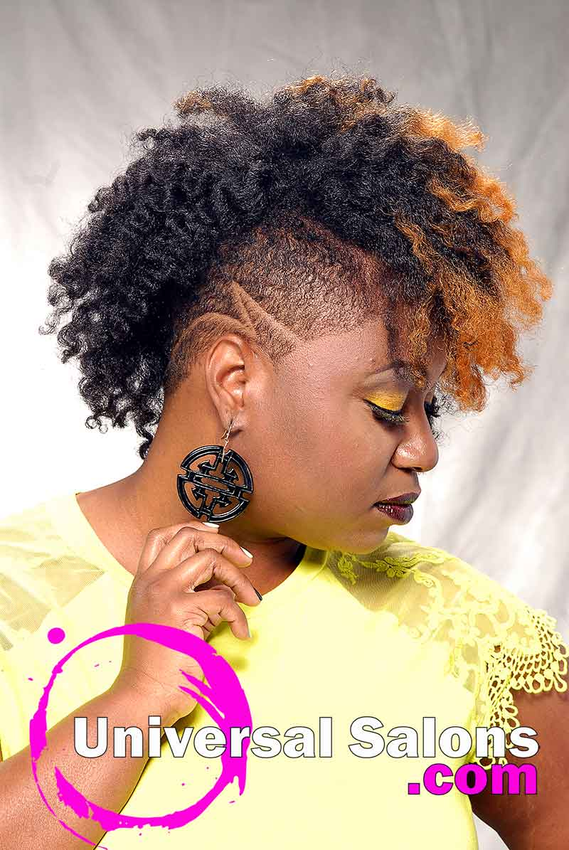 Natural Black Hairstyle with tapered Sides