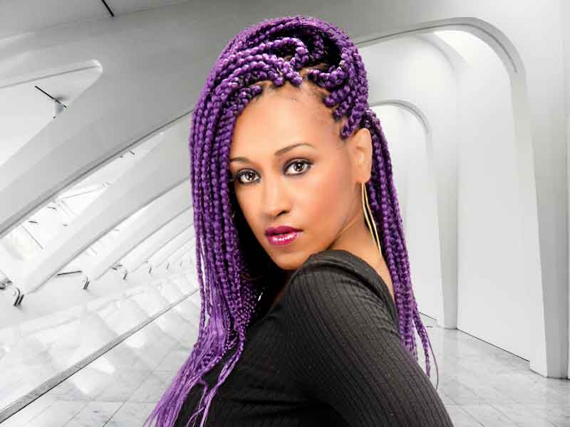 Eggplant Patra Long Braids Hairstyle