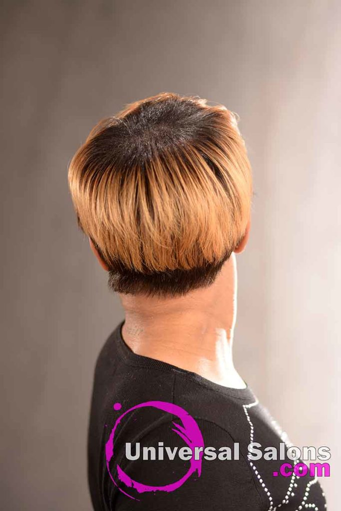 Back View: Short Hairstyle with a Custom Haircut and Ombre Color