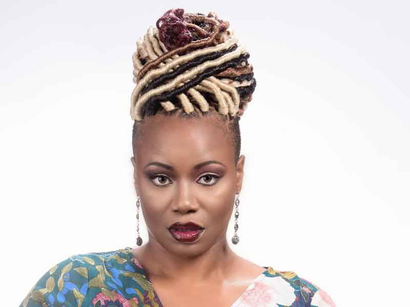 Faux Locs Hairstyle with Hair Color