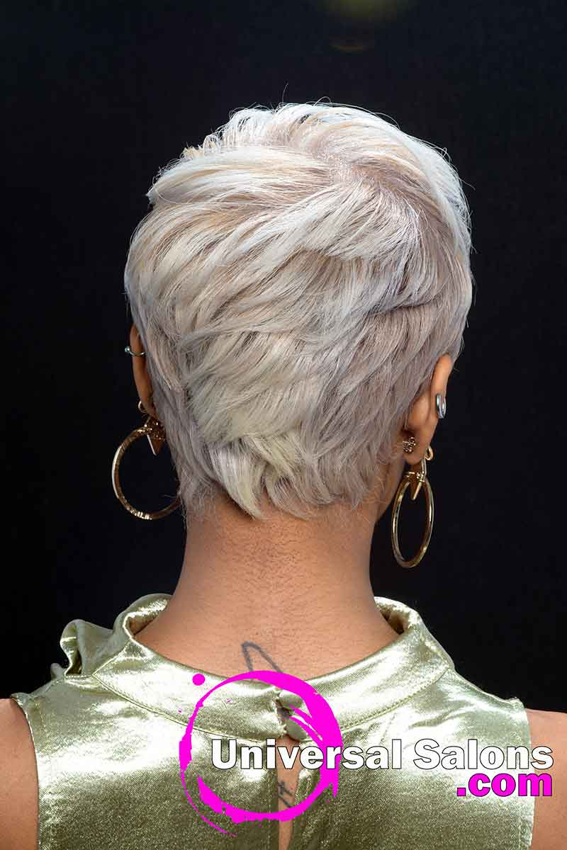 Back View Platinum Blonde Short Hairstyle